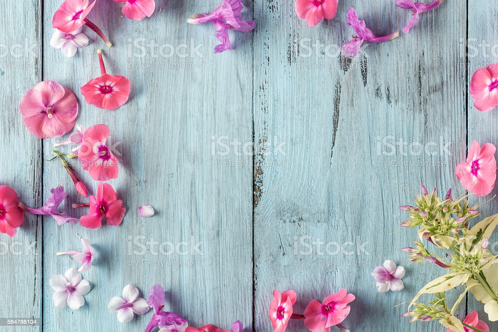 frame of flowers, background blue boards stock photo