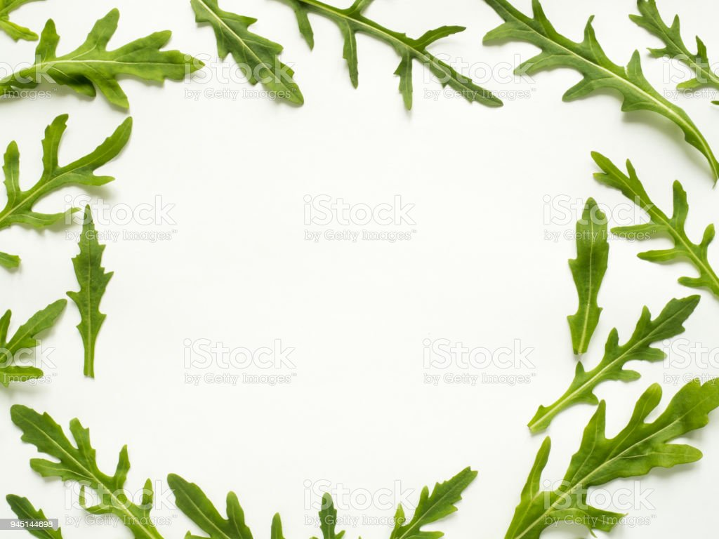 Frame of green arugula leaves on white background Copy space stock photo
