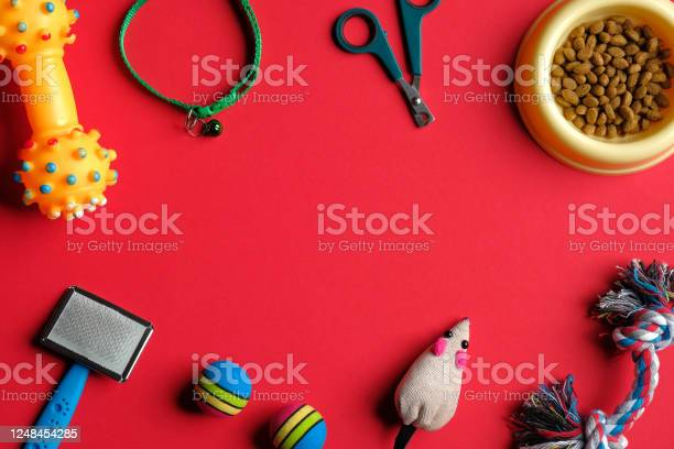Frame of pet accessories and food for cat and dog on red background picture id1248454285?b=1&k=6&m=1248454285&s=612x612&h=1kanamk7llpt1km lisip8hcdq2yxff26vgb 9amq1g=