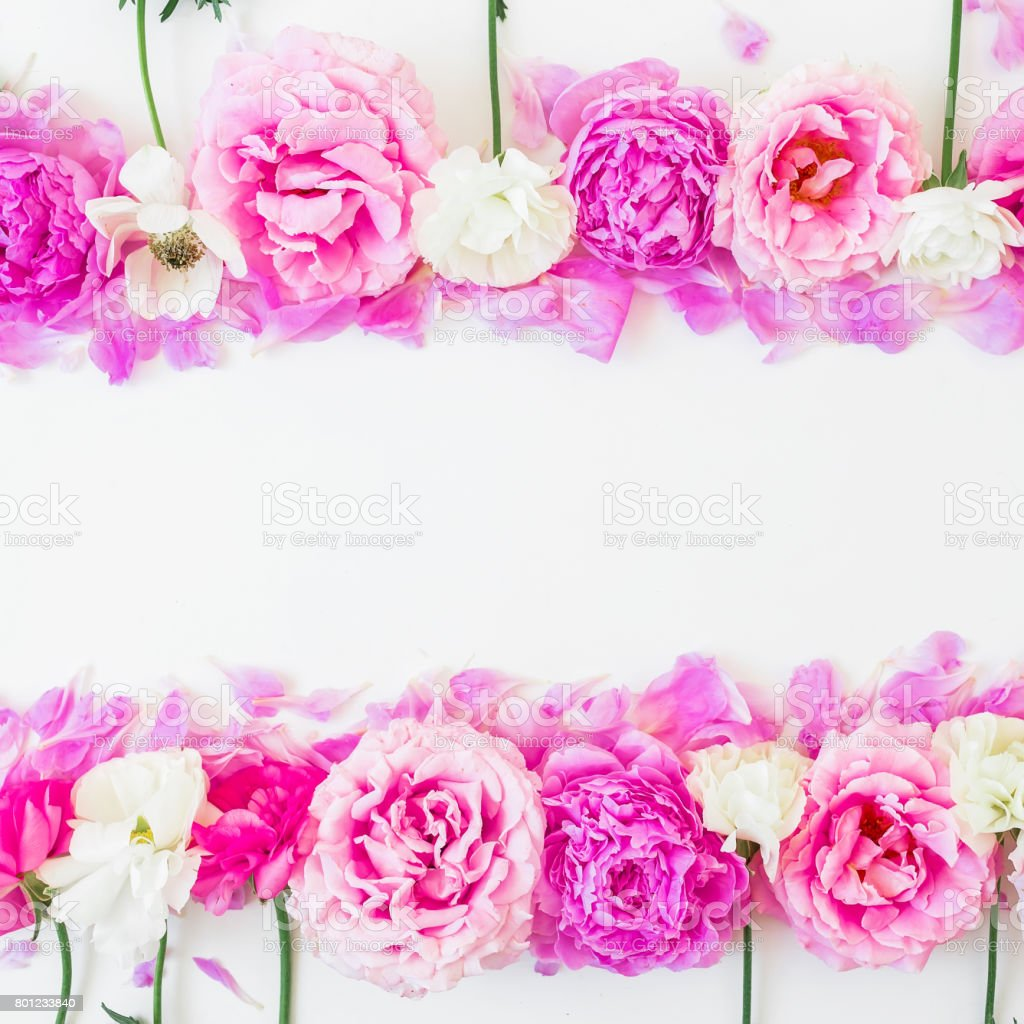 Frame of pink and white flowers on white background. Floral...