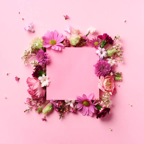 Frame of pink flowers over punchy pastel background valentines day picture id1147566288?b=1&k=6&m=1147566288&s=612x612&w=0&h=phohwwsezivxks1n8p6q ob7cd5bwzmz8drthguack8=