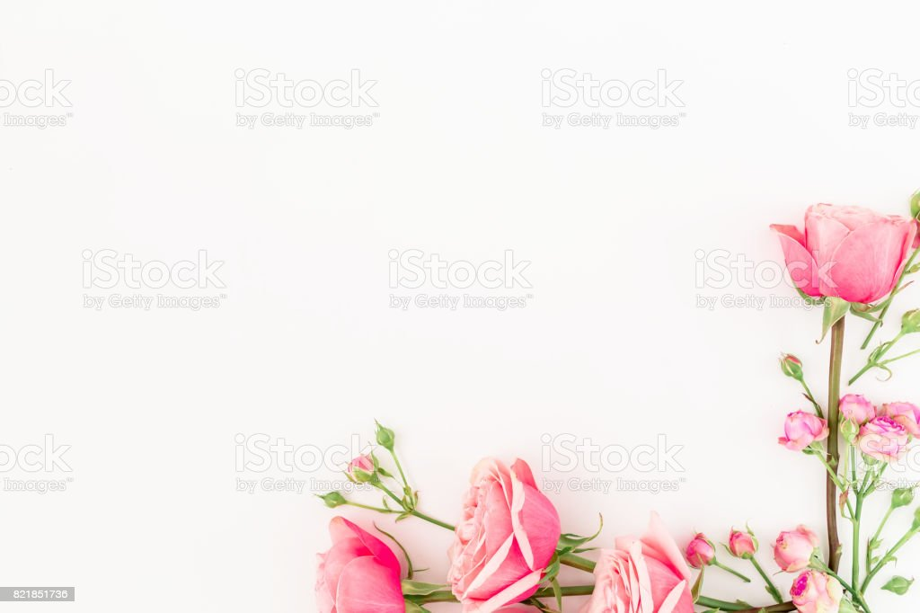 Frame Of Pink Roses And Buds On White Background Flat Lay Top View ...