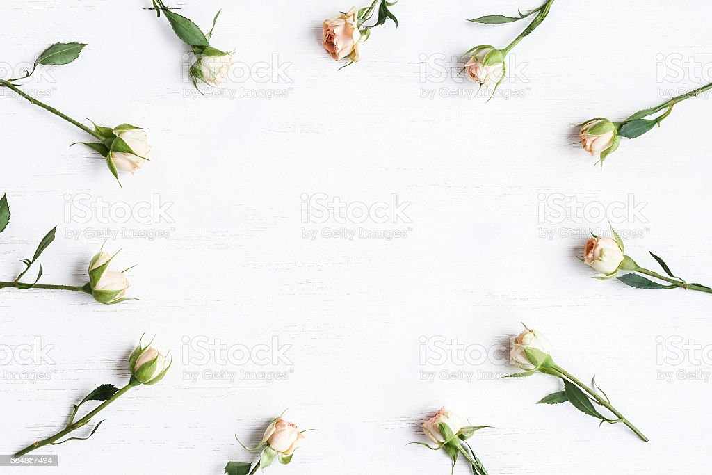 frame of rose flowers, top view, flat lay stock photo