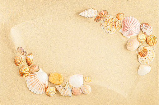 Frame of seashells on sand. Top view, copy space.