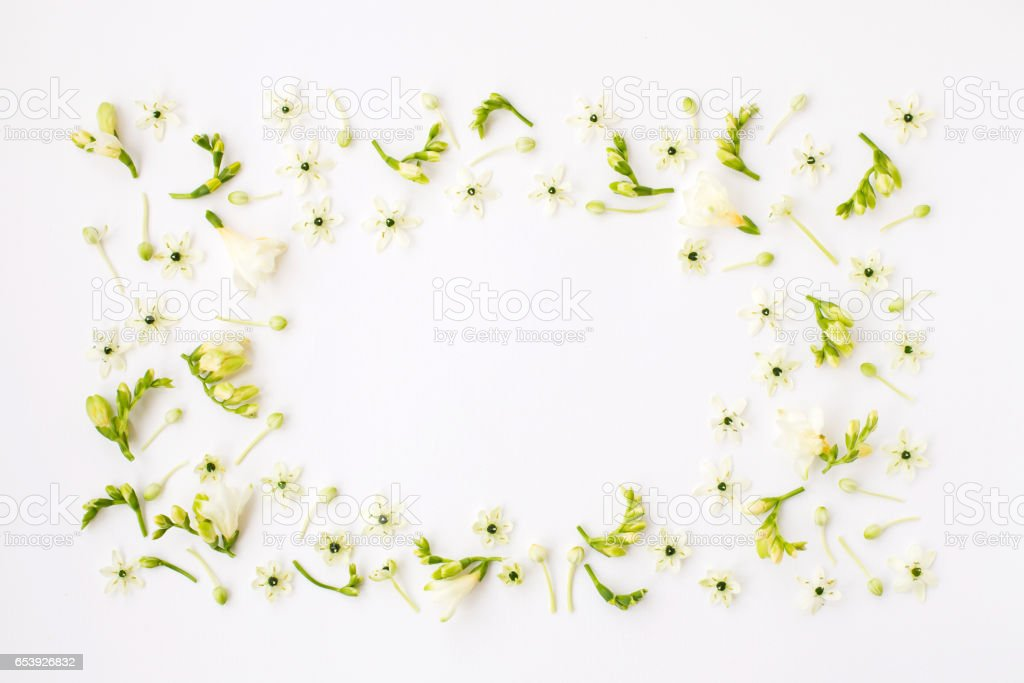 Frame of spring flower on white background. стоковое фото