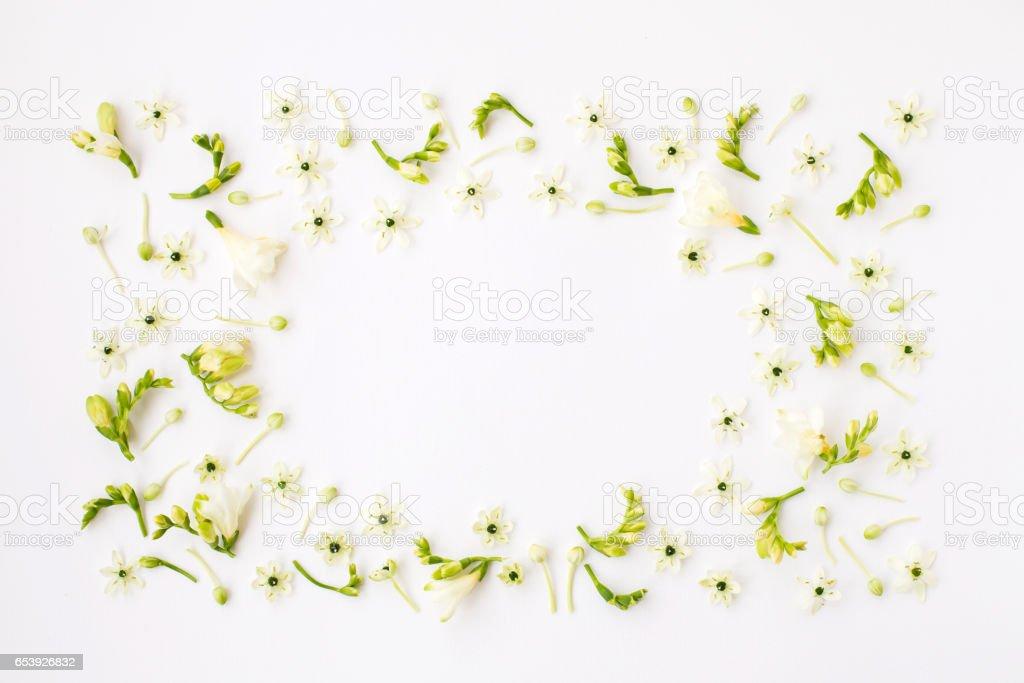 春天的花朵,白色背景上的框架。圖像檔