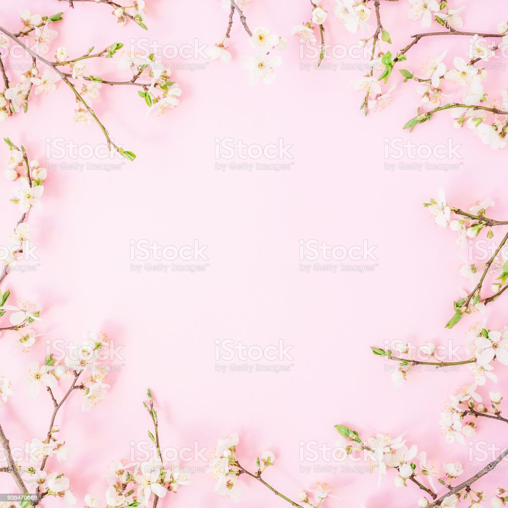 Frame Of Spring Flowers Isolated On Pastel Background Flat Lay Top