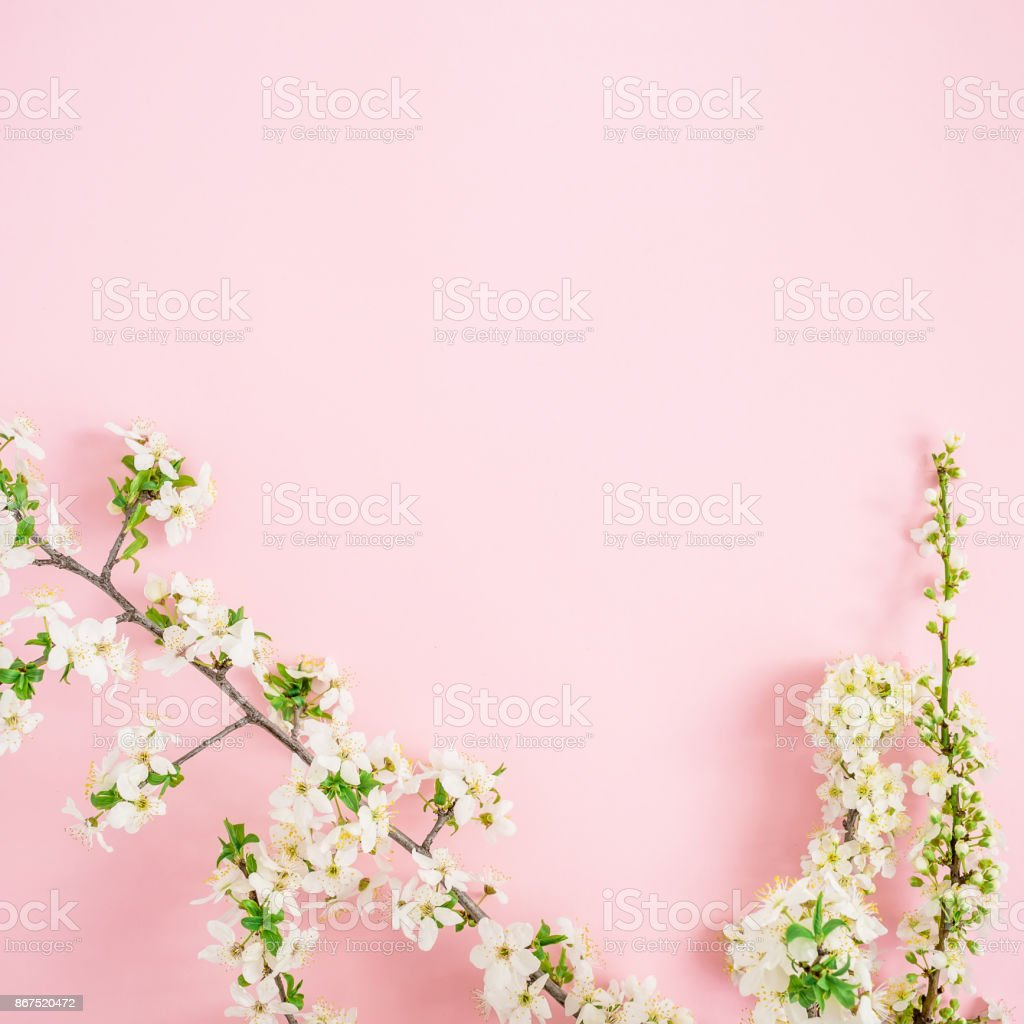 Frame Of Spring Flowers On Pink Background Flat Lay Top View Stock