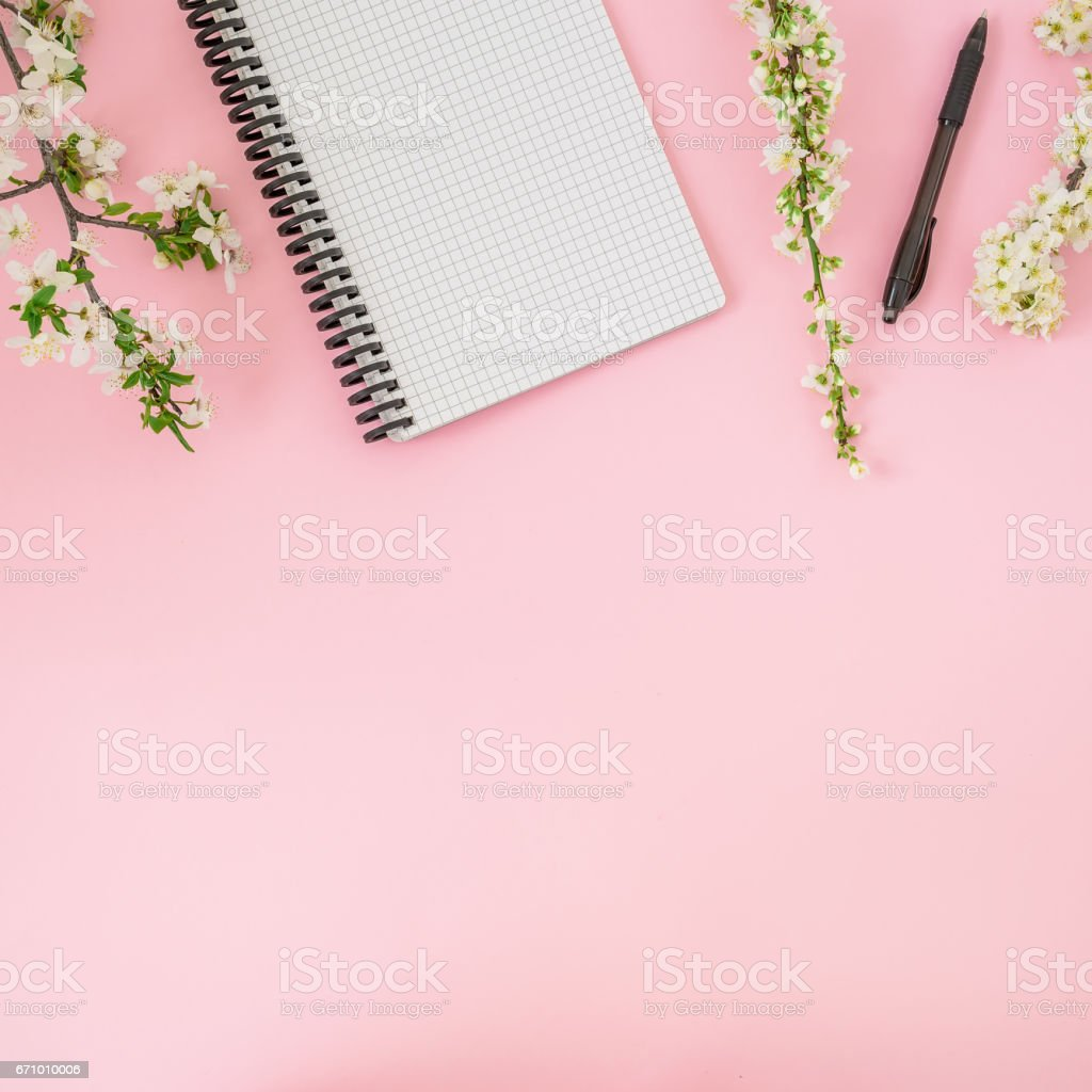 frame of spring white flowers notebook and pen on pink background