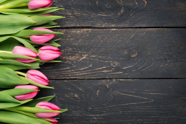 rahmen der tulpen auf rustikalen holz dunkel - holzblumen stock-fotos und bilder
