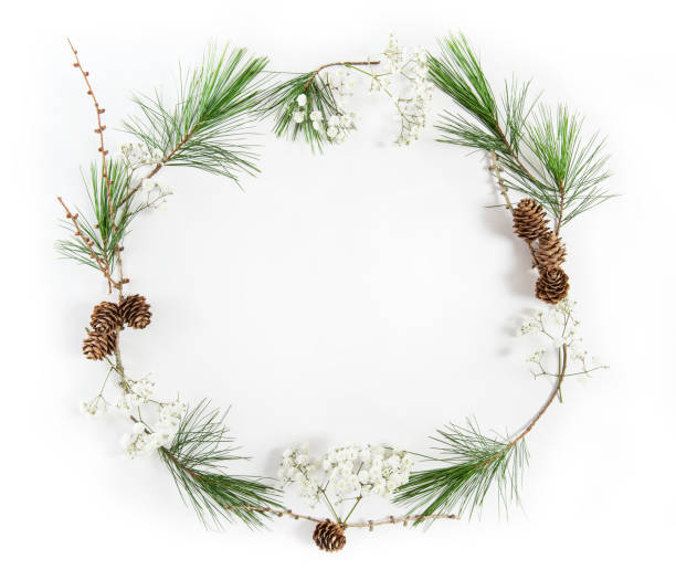Frame pine tree branches Christmas holidays flat lay stock photo