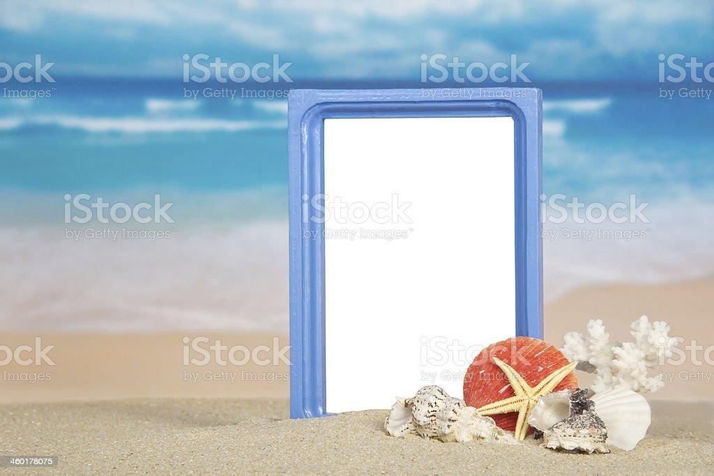 Frame, sea cockleshells and coral stock photo