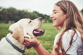 istock Frame with a beautiful girl with a beautiful dog in a park on green grass. 1127310752