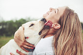 istock Frame with a beautiful girl with a beautiful dog in a park on green grass. 1127310802
