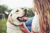 istock Frame with a beautiful girl with a beautiful dog in a park on green grass. 1127312764
