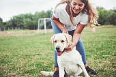 istock Frame with a beautiful girl with a beautiful dog in a park on green grass. 1127317646