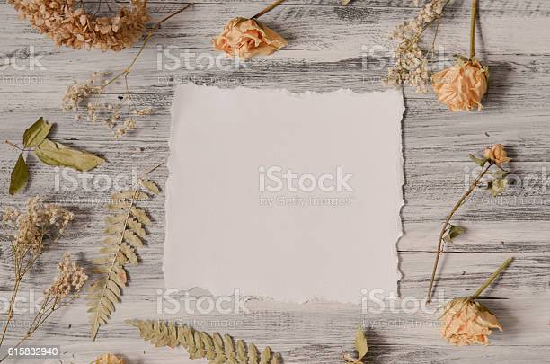 Frame with fern leaves roses and branches on wooden background picture id615832940?b=1&k=6&m=615832940&s=612x612&h=ipdtgmj1u3cfv8fothqujfvoarbp0debta4gklah  i=