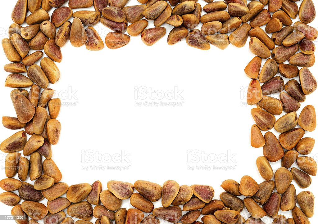 frame with Nuts of Siberian Cedar Pine royalty-free stock photo