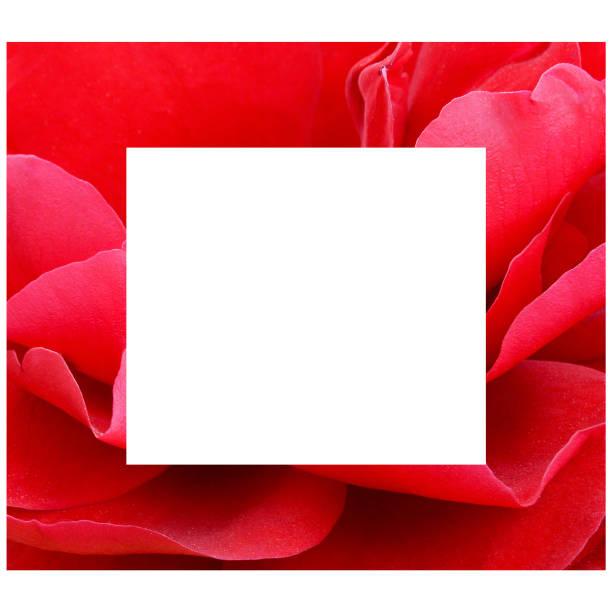 Frame with red rose picture id1146476939?b=1&k=6&m=1146476939&s=612x612&w=0&h=mru9j s0rvfmn1gubzrofao xldbbva58rxmioaiz5e=