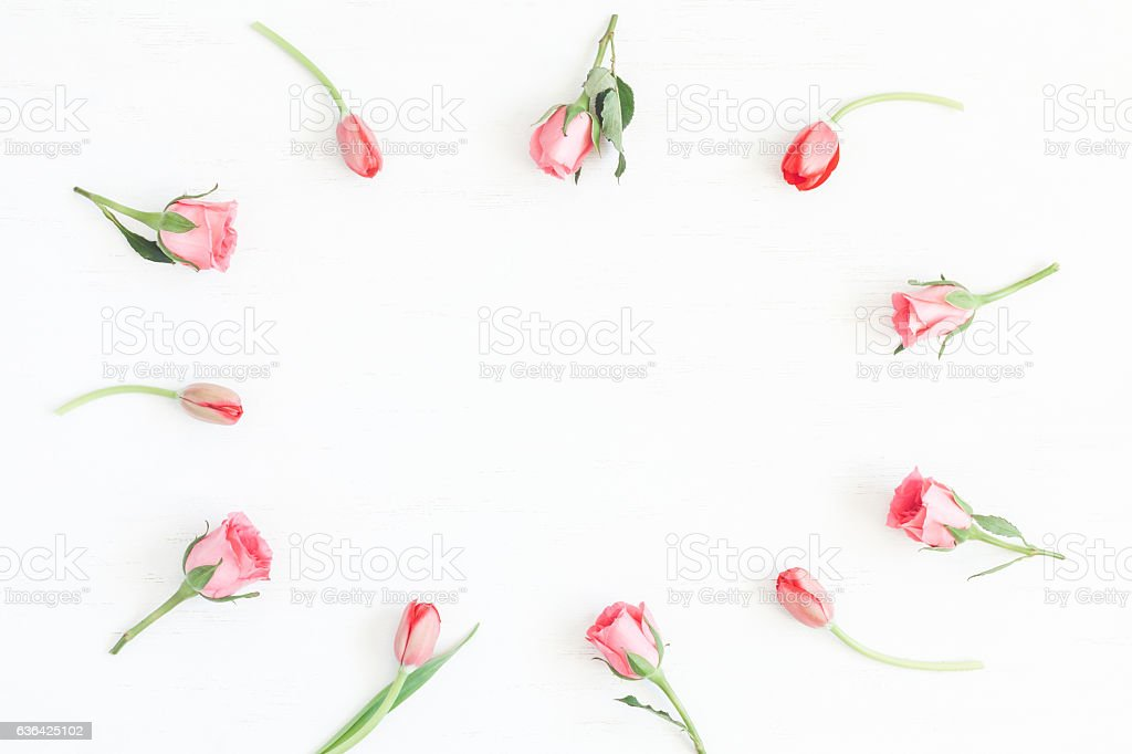 Frame with rose flowers and tulip. Flat lay, top view stock photo