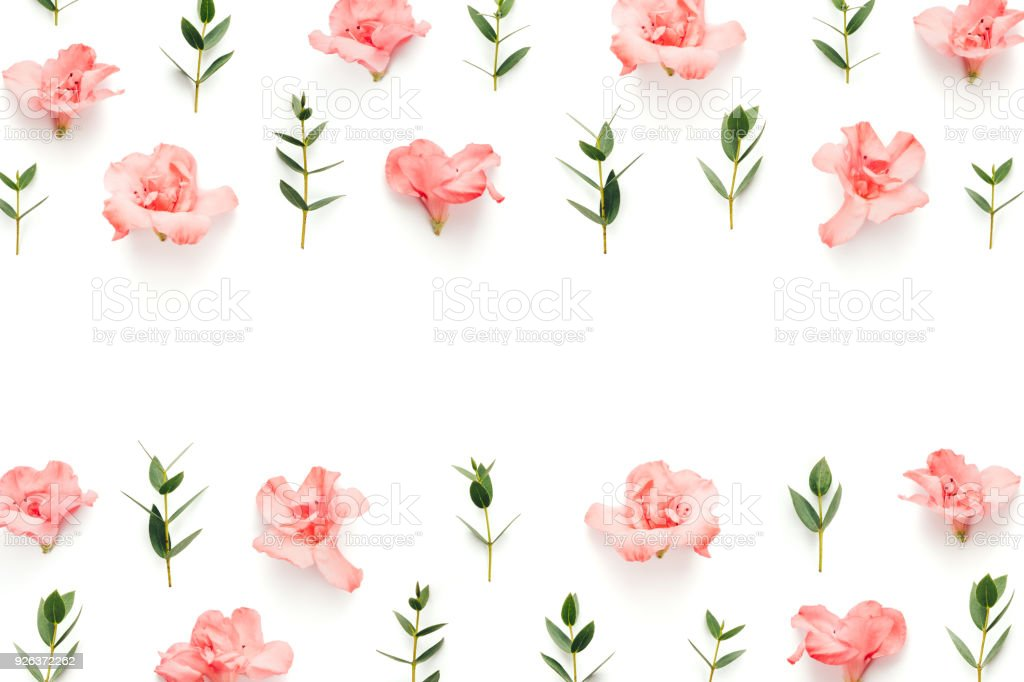 Frame With Soft Pink Flowers And Green Leaves On White Background
