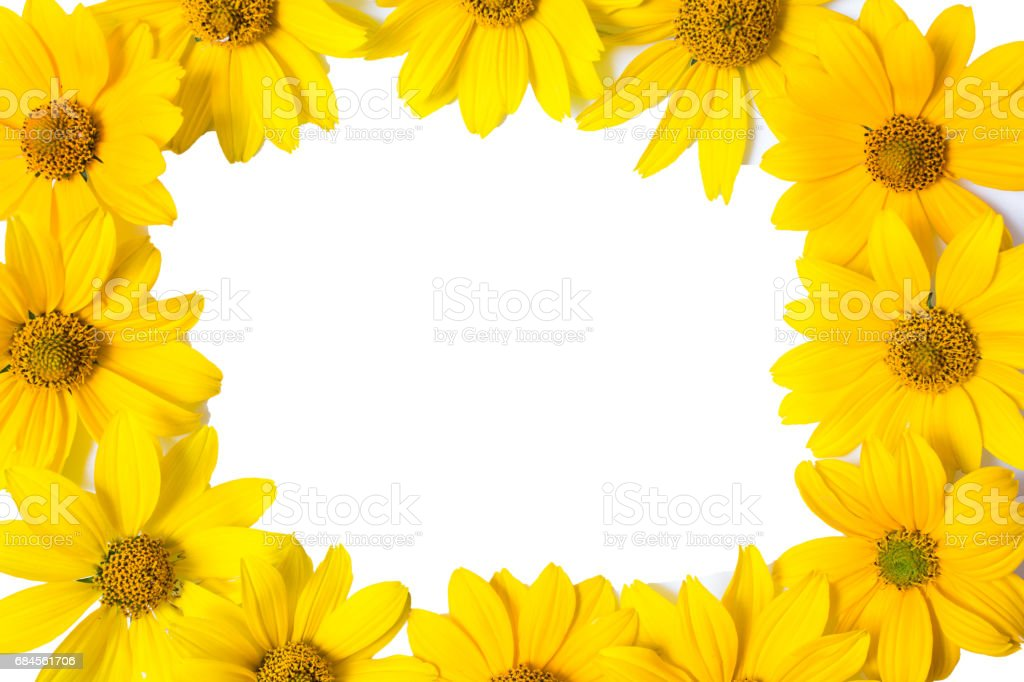 Frame With Yellow Flowers Isolated On White Background Flowers