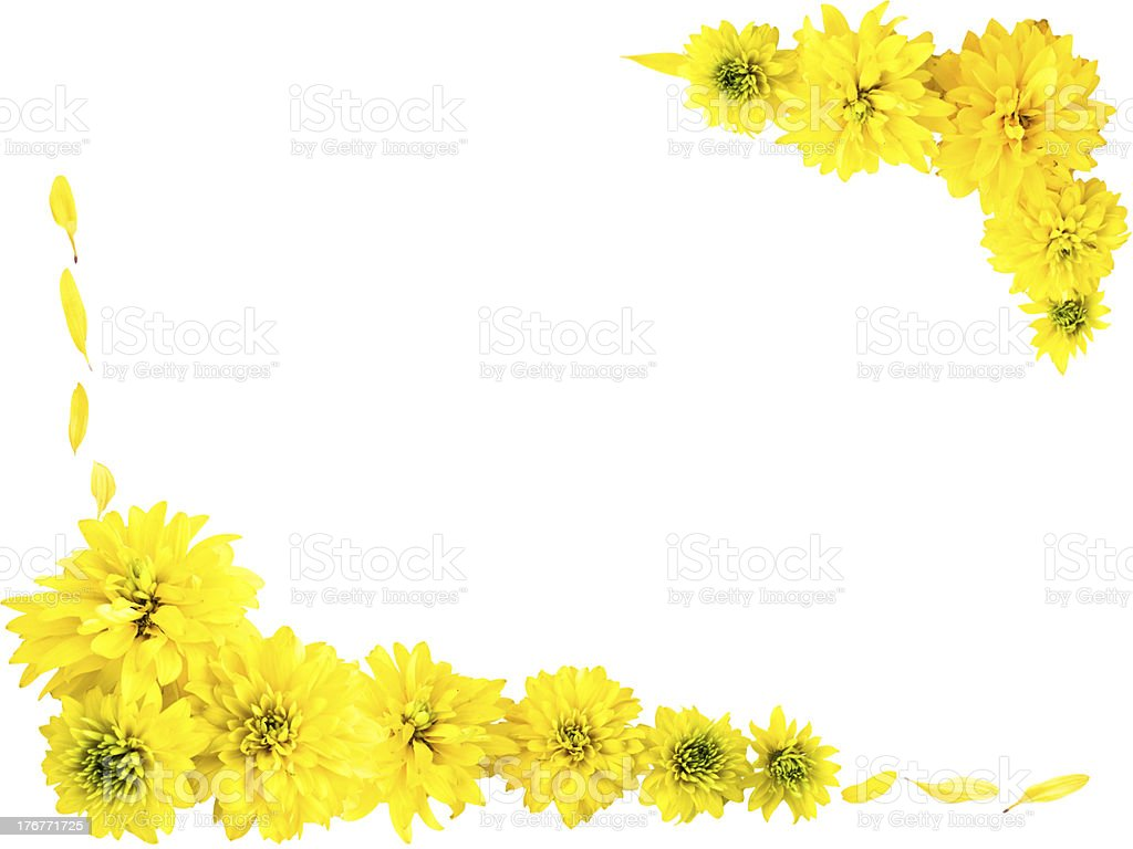 Frame with yellow flowers royalty-free stock photo
