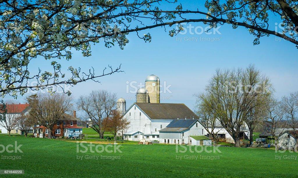 Framed Amish Farm stock photo