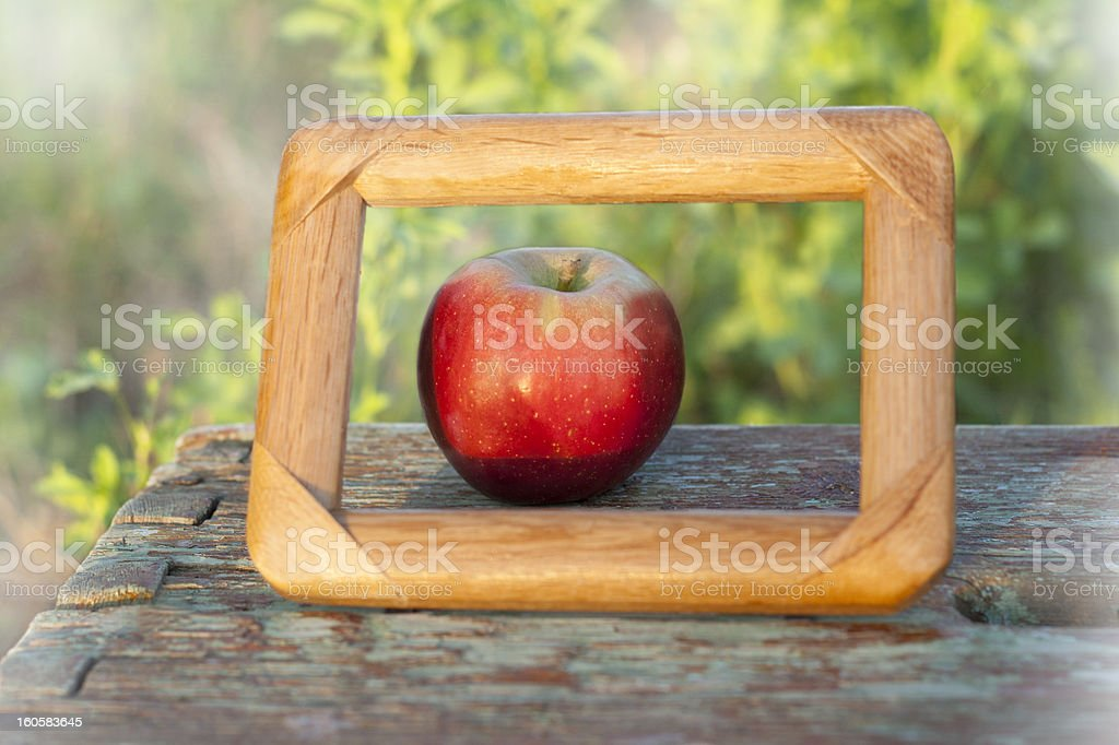framed apple royalty-free stock photo