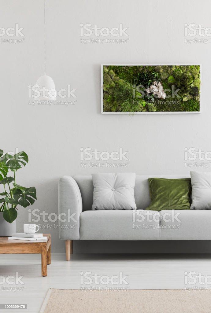 Gerahmte Grünen Moosgarten Auf Einer Weißen Wand In Einem Trendigen ...