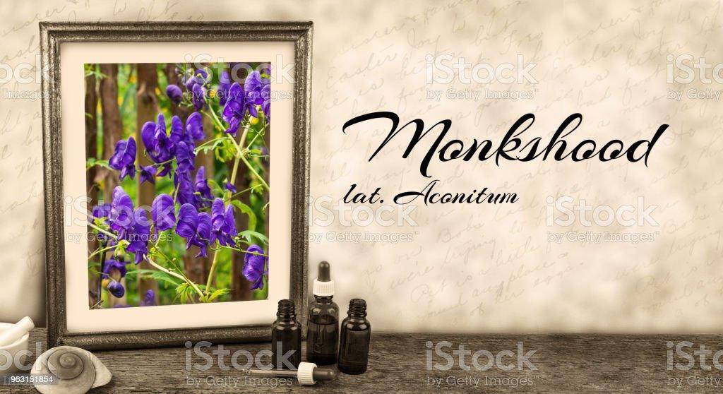 Inramade vintage bild med medicinalväxt eller örter och latin etikett - Stormhatt, Aconitum - Royaltyfri Aconitum Carmichaelii Bildbanksbilder