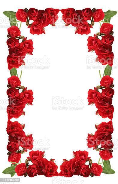 Framework from roses on a white background picture id144283916?b=1&k=6&m=144283916&s=612x612&h=ofgrpjnnkjqdvu5z33 eds8j0objn7xb95xyaupu3ka=