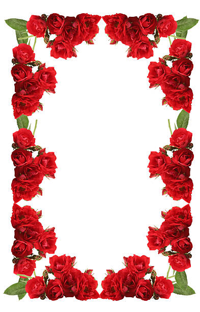 Framework from roses on a white background picture id144283916?b=1&k=6&m=144283916&s=612x612&w=0&h=yph9nmxvgevwj7jxka  4hdhukkzhdbqbeiun8c4sw8=