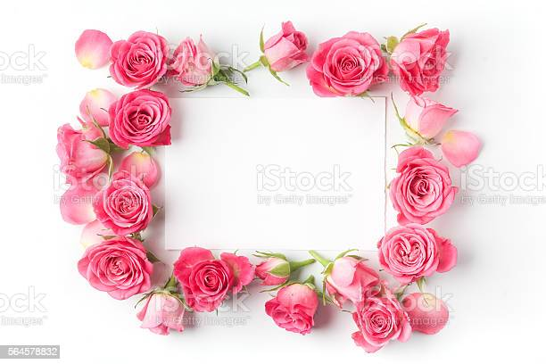 Framework from roses on white background flat lay top view picture id564578832?b=1&k=6&m=564578832&s=612x612&h=vv2tackgtnhx9kg0wgxe459t9lungwj0sdosftqbpgy=
