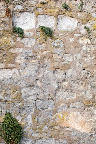 France, Val de Loire-Beautiful and old stone wall with vegetation moss, ferns, grass stock photo