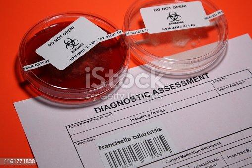 pathogenic bacteria in petri dish abstract.