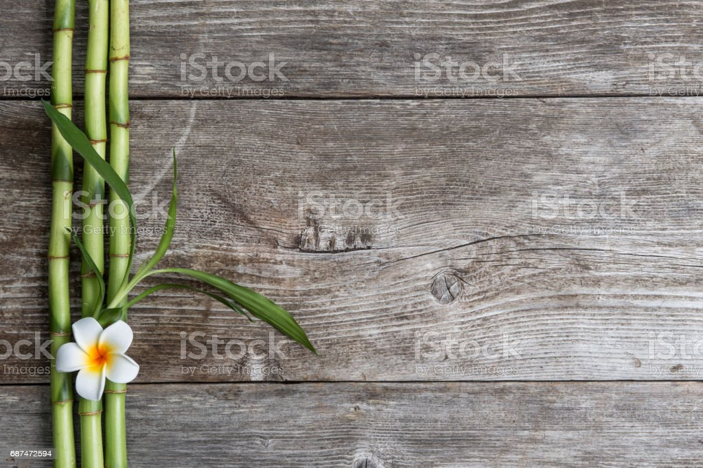 frangipani flower and bamboo on the wooden background - foto de acervo