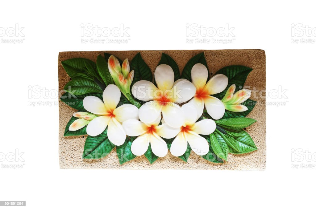 Frangipani or Plumeria alba Mold from concrete for building with clipping path royalty-free stock photo