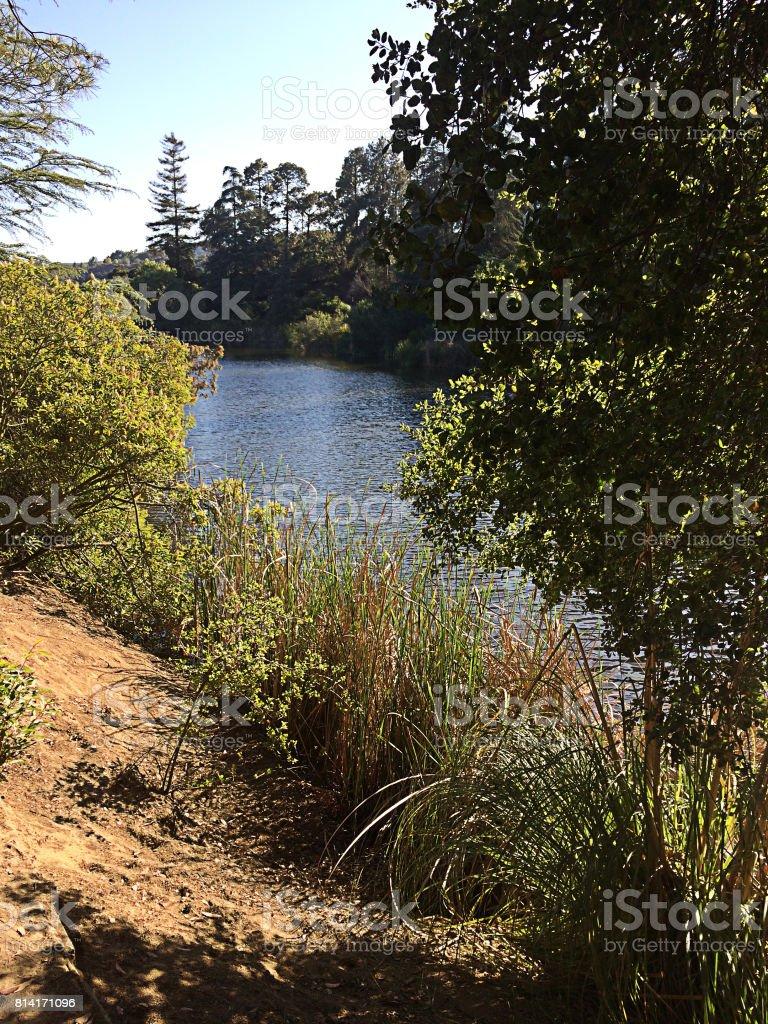 Franklin Park Oasis stock photo
