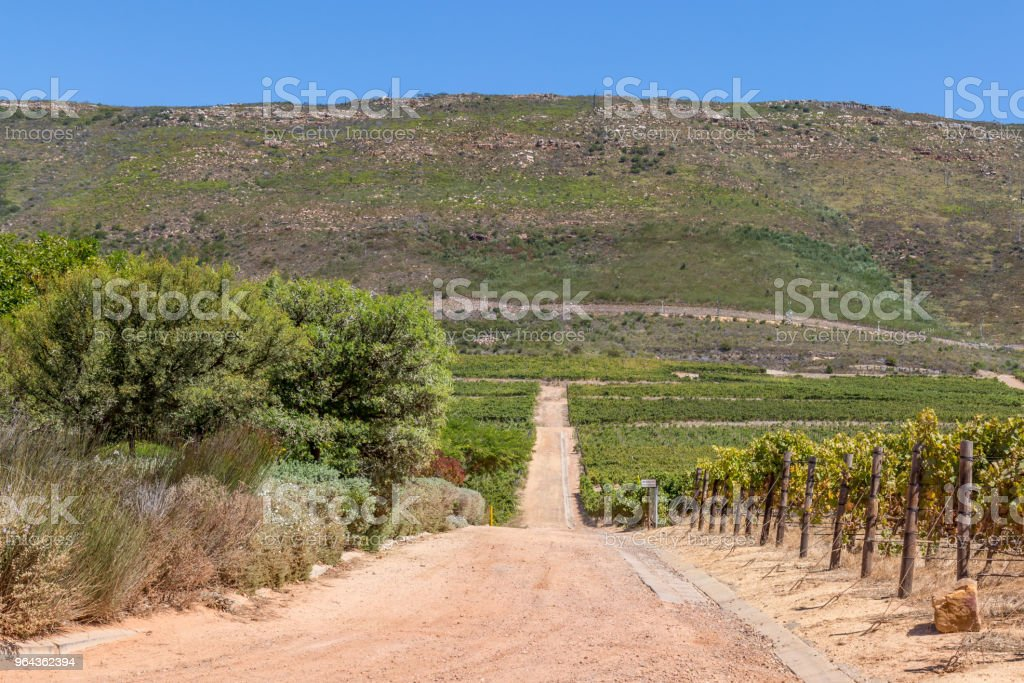 Franschhoek landschap - Royalty-free Afrika Stockfoto