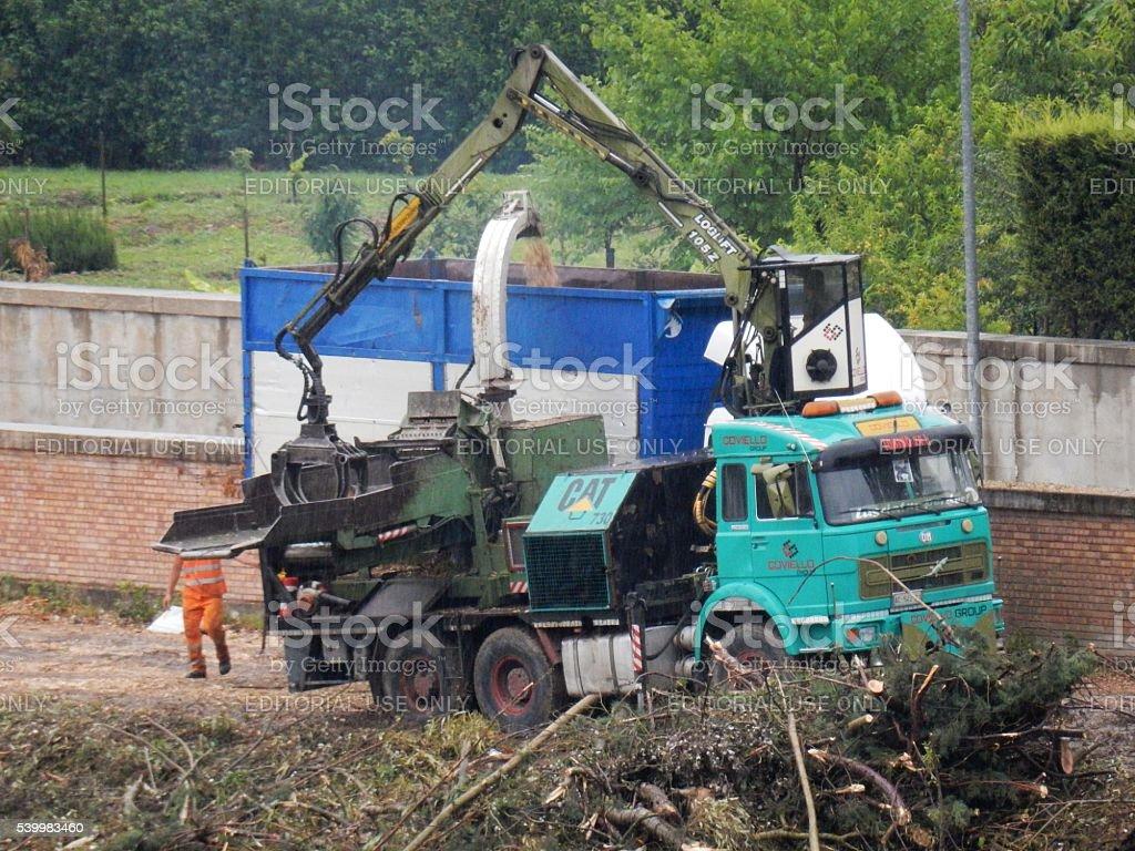 Frantumazione alberi stock photo