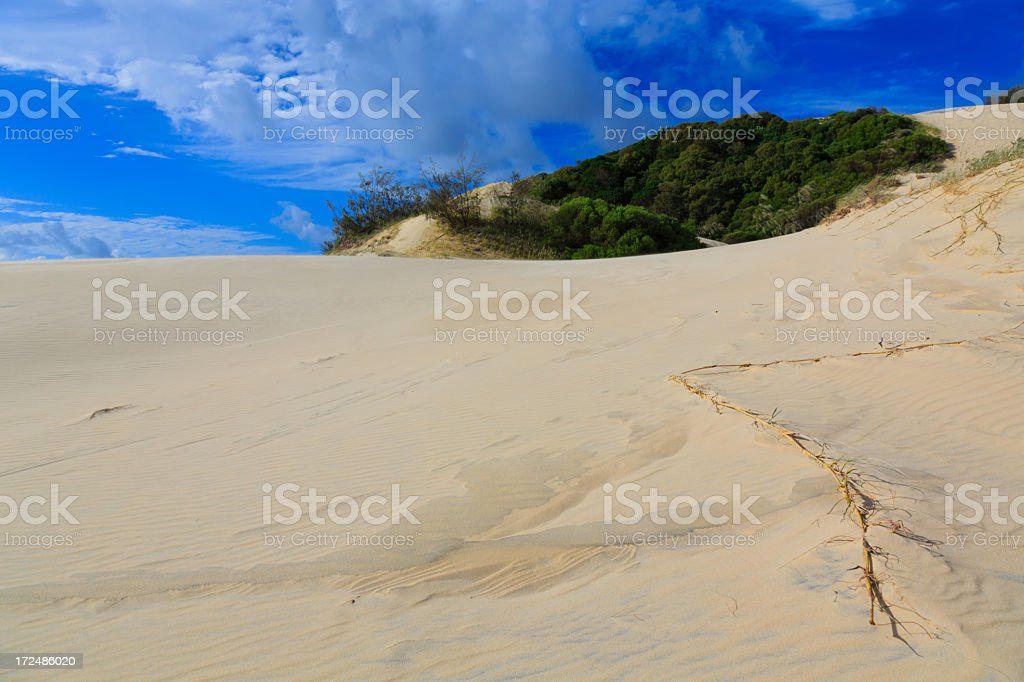 Fraser Island Sand Dunes, Australia royalty-free stock photo