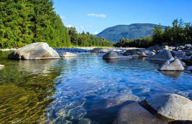 Fraser River British Columbia Fraser River British Columbia british columbia stock pictures, royalty-free photos & images