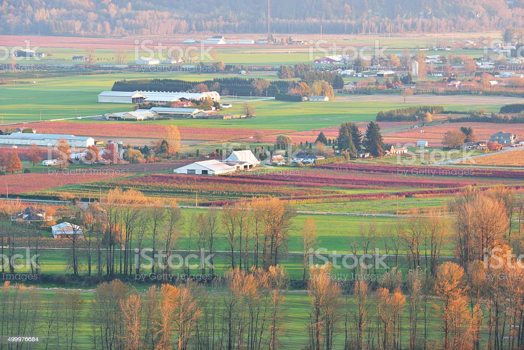 Fraser Valley Autumn sunset stock photo