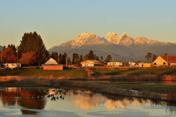 Fraser Valley Farm Houses and Golden Ears Mountain at sunset stock photo
