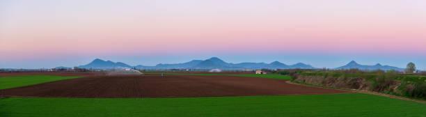 frassine - montagnana - vista sui colli euganei - panoramica - pianura padana foto e immagini stock