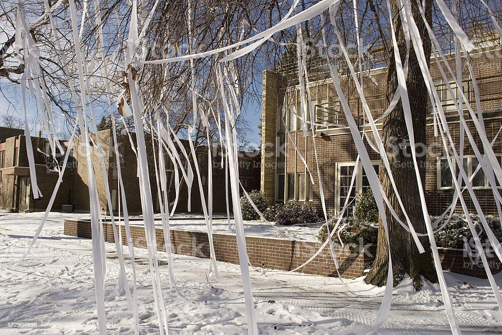 Frat house tee-peed on university campus, Denver stock photo