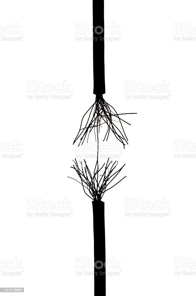 Frayed Rope Stock Photo & More Pictures of Black Color | iStock