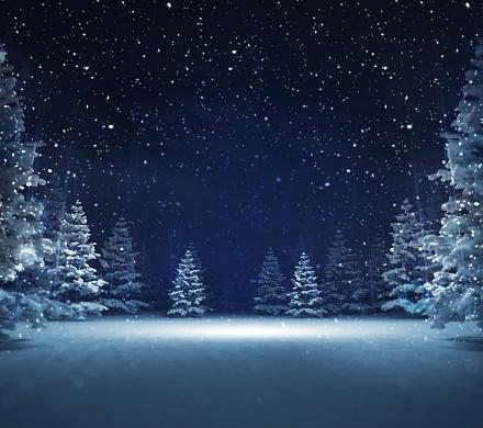 겨울 눈 덮인 숲에서 자유 지역 0명에 대한 스톡 사진 및 기타 이미지