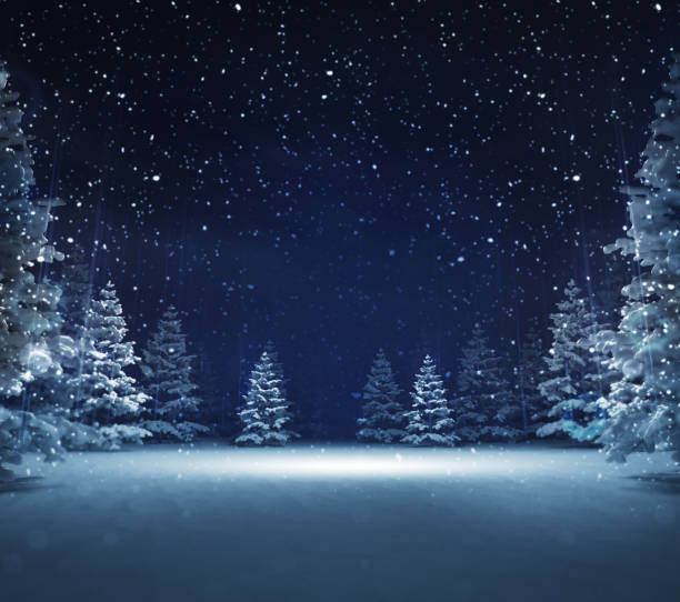 free area in winter snowy woods - night stock pictures, royalty-free photos & images